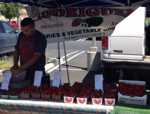 Rodriguez Brothers Berries, CCOF