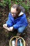 Wild Mendocino Mushrooms: Hunt, Gather, Eat