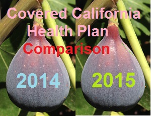 Small changes between 2014 and 2015 health plan designs offered through Covered California.
