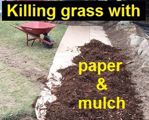 Smothering grass to reduce maintenance and water.