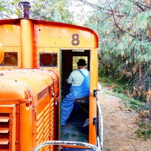 Engineer Al drives the Howard #8 along the Placerville and Sacramento Valley Railroad.