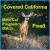 Medi-Cal Access Program For Pregnant Women