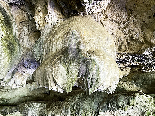 Speleothem, deposit of minerals flowing into the tunnel leaving behind this fanciful calcium formation.